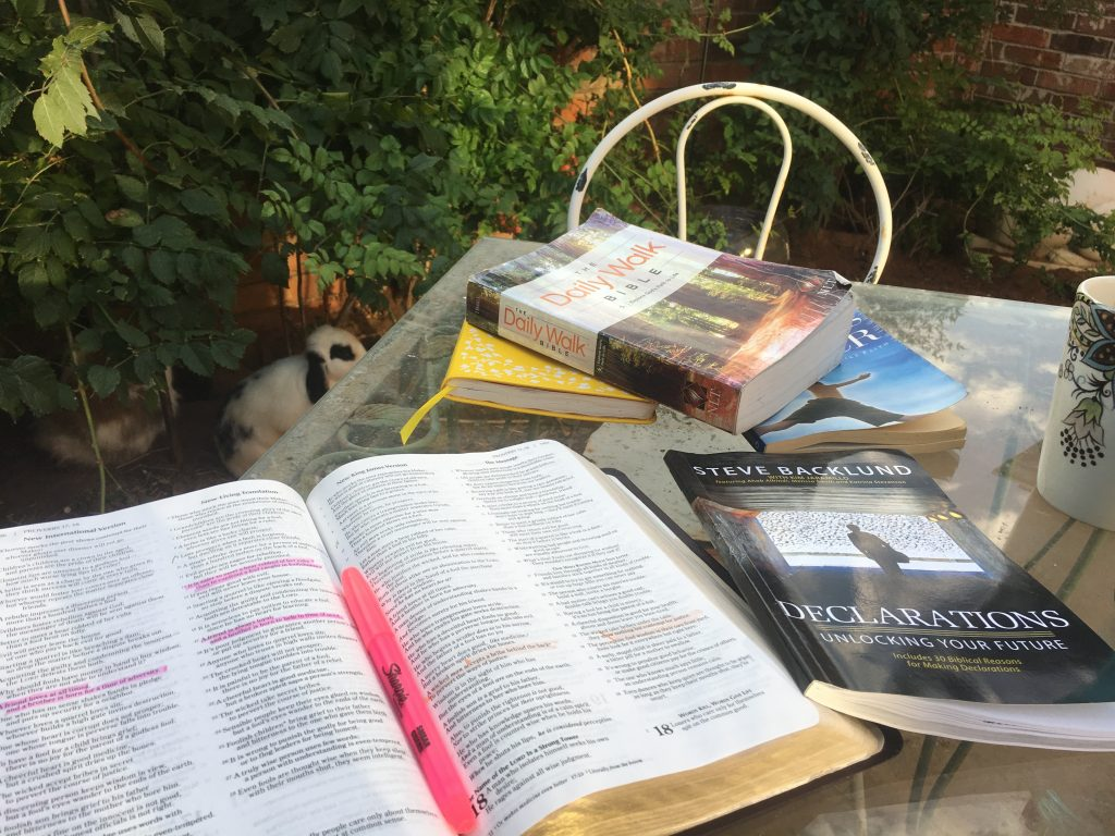 bunny courtyard bible study