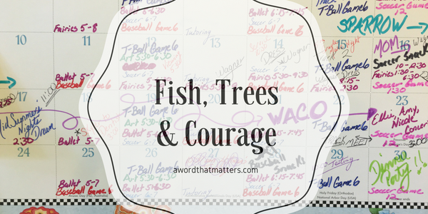 Fish, Trees & Courage