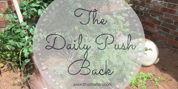The Daily Push Back